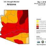Firewise in Arizona's drought